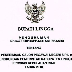 """Ini Formasi Seleksi Penerimaan CPNS """"PEMKAB LINGGA"""" 9"""