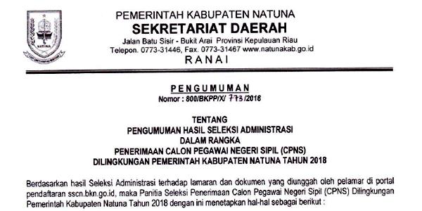 """Pengumuman Lulus Seleksi Administrasi Penerimaan """"CPNS PEMKAB NATUNA"""" 1"""