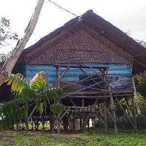Usaha Ternak Ayam dan Kambing di Kampung Sidodadi, Bukit Tembak, Kelurahan Sungai Pasir, Kecamatan Meral, Kabupaten Karimun