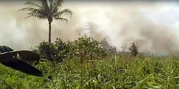 10 Hektar Hutan Dilalap Sijago Merah, Pelaku Ditangkap 1
