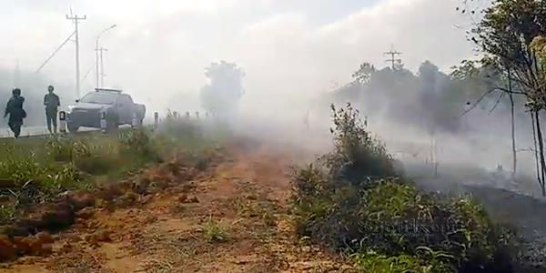 Tujuh Hektar Hutan Terbakar di Bintan 1