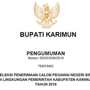 Informasi Penerimaan CPNS Kabupaten Karimun Tahun 2019 7