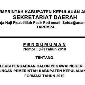 Informasi Penerimaan CPNS Kabupaten Kepulauan Anambas Tahun 2019 7