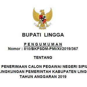 Informasi Penerimaan CPNS Pemkab Lingga Tahun 2019 8