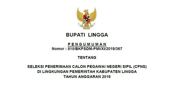 Informasi Penerimaan CPNS Pemkab Lingga Tahun 2019
