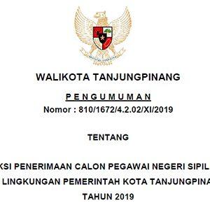 Informasi Penerimaan CPNS Pemko Tanjungpinang Tahun 2019 8
