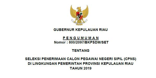 Informasi Penerimaan CPNS Provinsi Kepri Tahun 2019 1