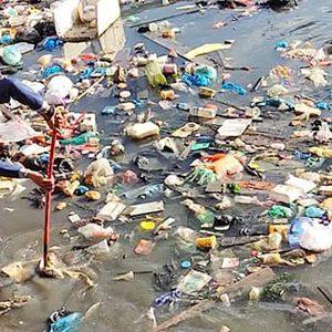 Walikota Apresiasi Warga Gotong Royong Bersihkan Sampah di Laut 4