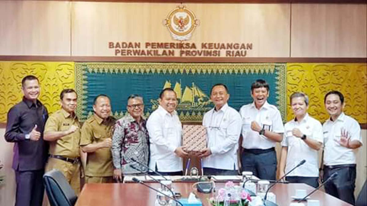 Tercepat di Riau, Bupati Meranti Serahkan LKPD 2019 Kepada BPK RI 1