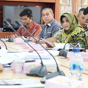 Wakil Walikota Tanjungpinang, Hj. Rahma S.IP, mengikuti rapat lanjutan dengan agenda Koordinasi Pembangunan Revitalisasi Pasar Rakyat melalui Kementerian Perdagangan