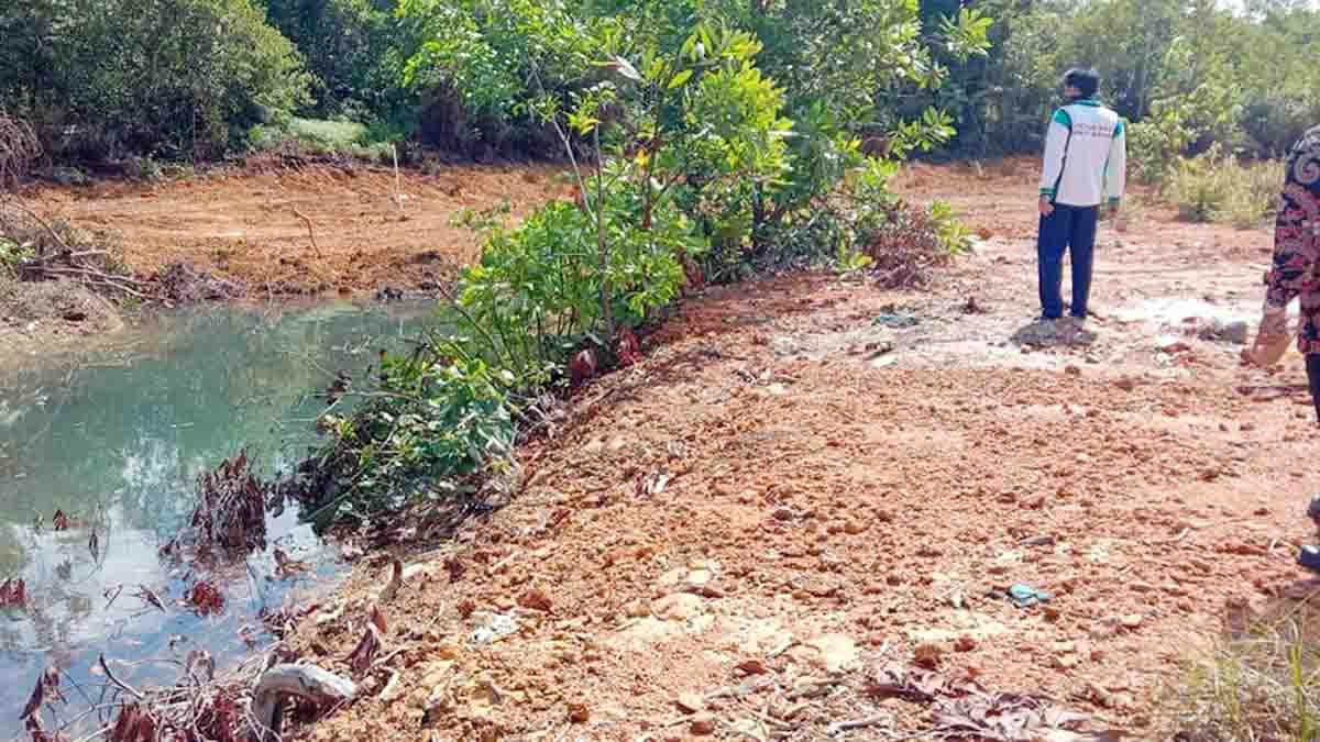 Polres Bintan Langsung Bereaksi, Penimbun Hutan Mangrove Dipanggil 1