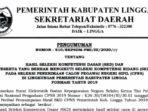 Pengumuman Hasil SKD CPNS Pemkab Lingga Formasi 2019 10