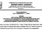 Pengumuman Hasil SKD CPNS Pemkab Natuna Formasi 2019 1