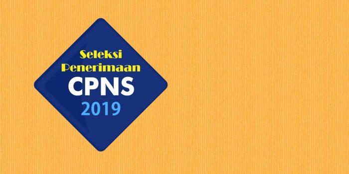 Pengumuman Verifikasi Sertifikat Pendidik Perserta SKB CPNS Formasi 2019 2