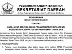 Pengumuman Lulus Seleksi Penerimaan CPNS Pemkab Bintan 2