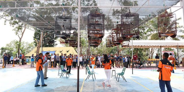 Lanal Dabo Gelar Lomba Burung Berkicau dan Bazar Pasar Murah