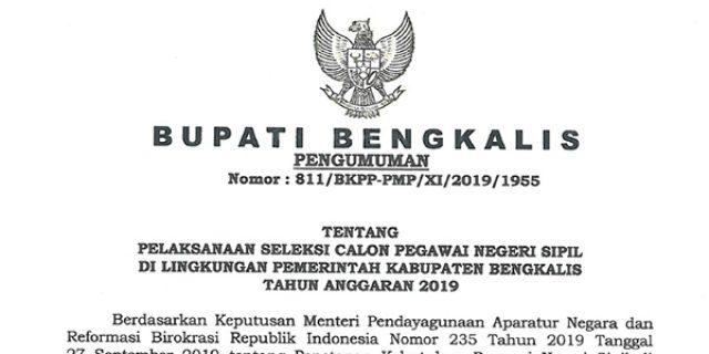 Informasi Penerimaan CPNS Pemerintah Kabupaten Bengkalis 2019