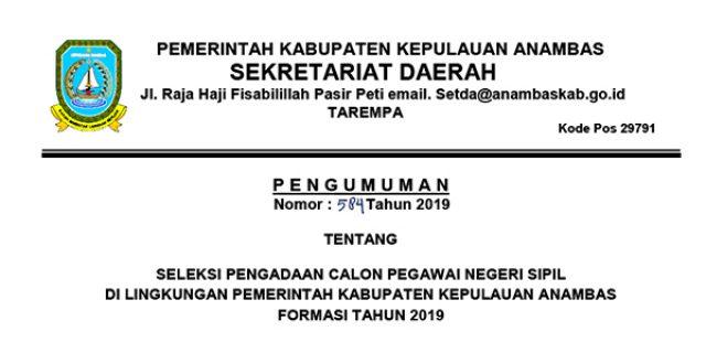 Informasi Penerimaan CPNS Kabupaten Kepulauan Anambas Tahun 2019