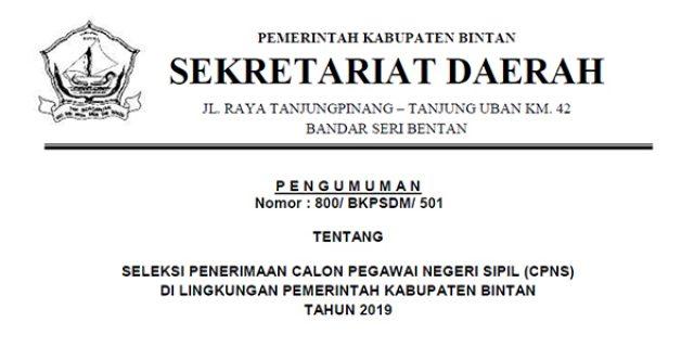 Informasi Penerimaan CPNS Kabupaten Bintan Tahun 2019