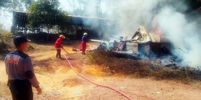 Idul Adha, Tempat Pengeringan Kayu Milik CV ABR Hangus Terbakar