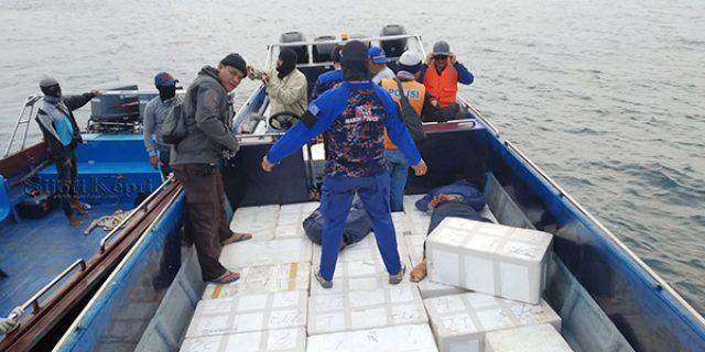 214.100 Benih Lobster Gagal Diselundupkan ke Singapura