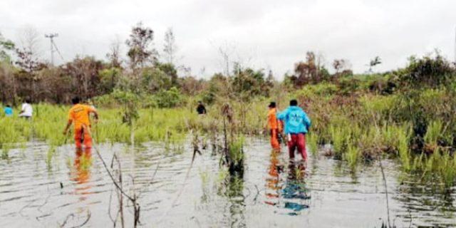 Saodah, Tersesat dan Hilang di Hutan Kawal Bintan